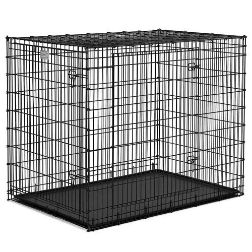 Should I Get A Large Crate For A Small Dog