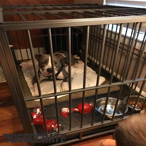 Smithbuilt Heavy Duty Dog Cage Crate Review 2018