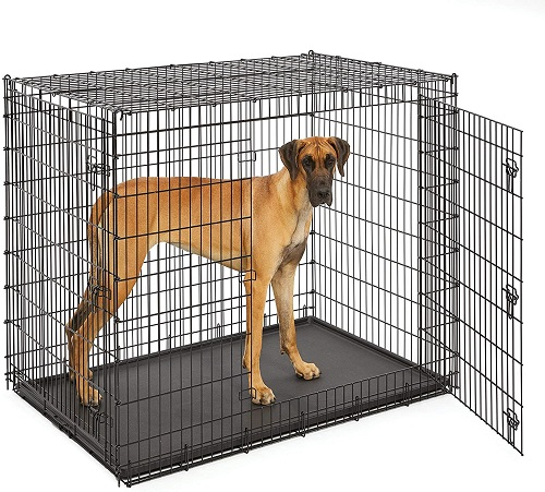 MidWest XXL 54 inch Dog Crate