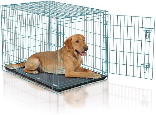 ProSelect Easy Large Dog Crate 42inch